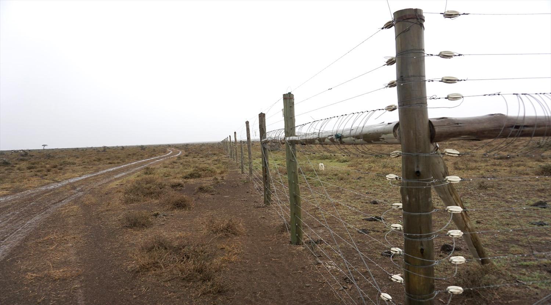 Electric fences are common methods (Endonyonarasha village, Kenya)